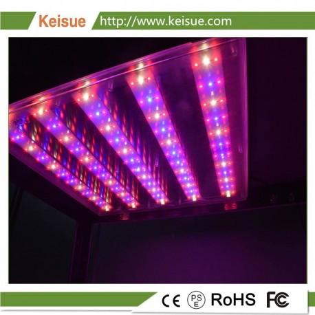 ED Grow osvětlení KES-GL-001